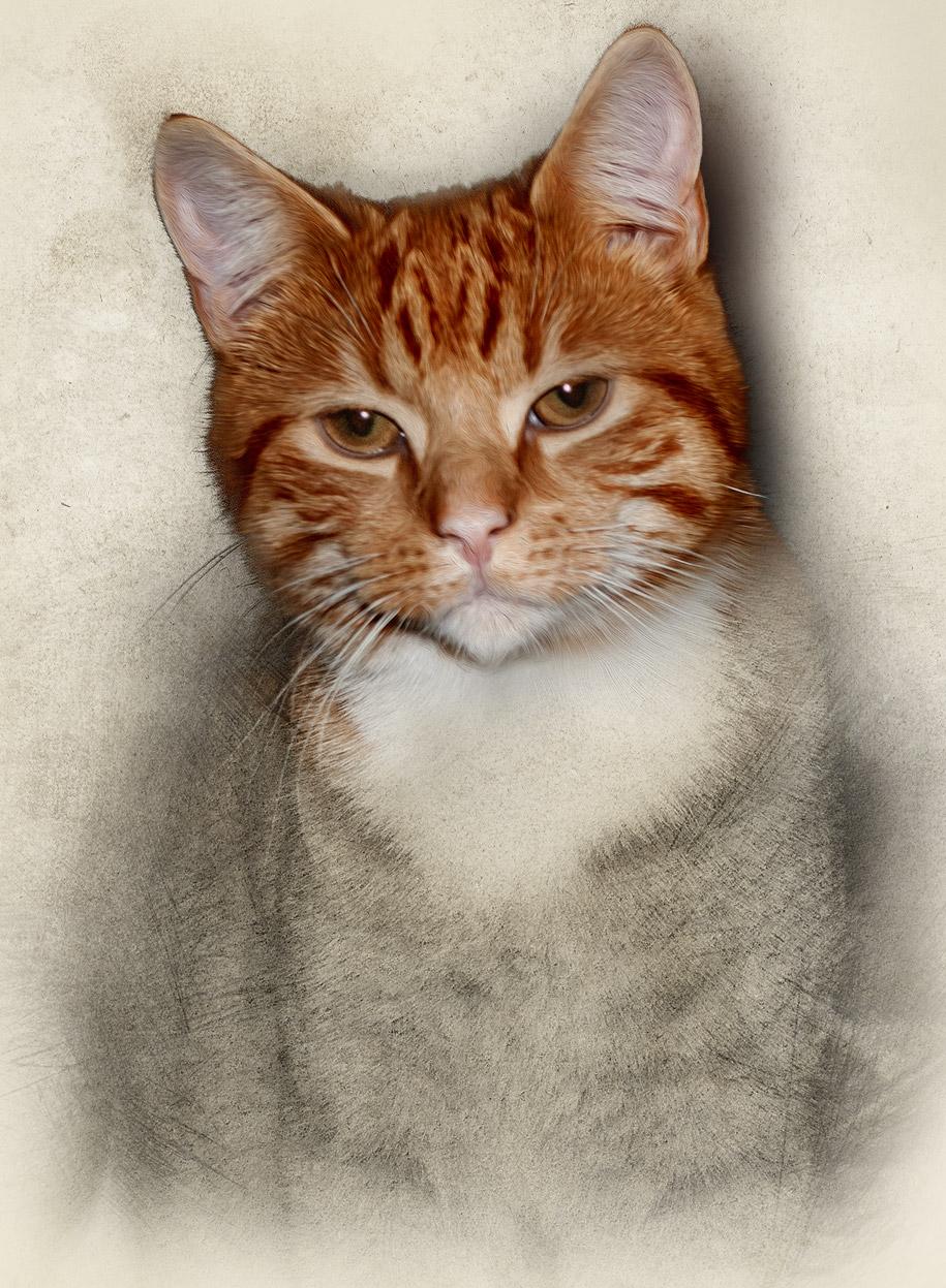 Cat Scetch